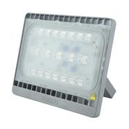 PHILIPS สปอร์ตไลท์ LED WARM WHITE 50 วัตต์ (WARM WHITE)
