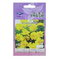 CHIATAI เมล็ดพันธุ์ดาวกระจายสีเหลือง สีเหลือง